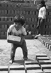 Lavoro minorile: perché?